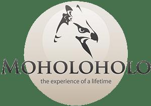 Moholoholo