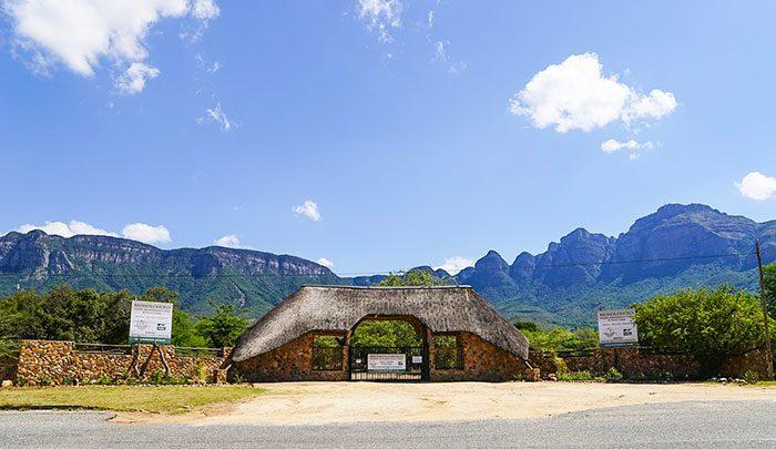 Rehab Gardens Moholoholo